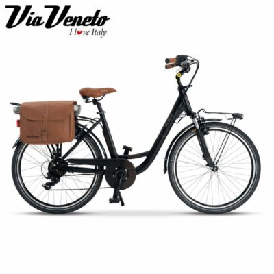 VV E-62 Lady - 6 Speed - Alloy - E-Bike - 36 Volts